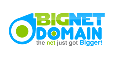 BigNetDomain Sticky Logo