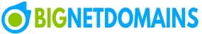 BigNetDomain Mobile Logo